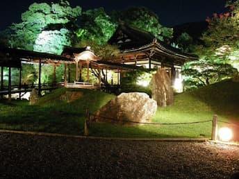 <SL>京のライトアップ 青蓮院門跡と高台寺・圓徳院