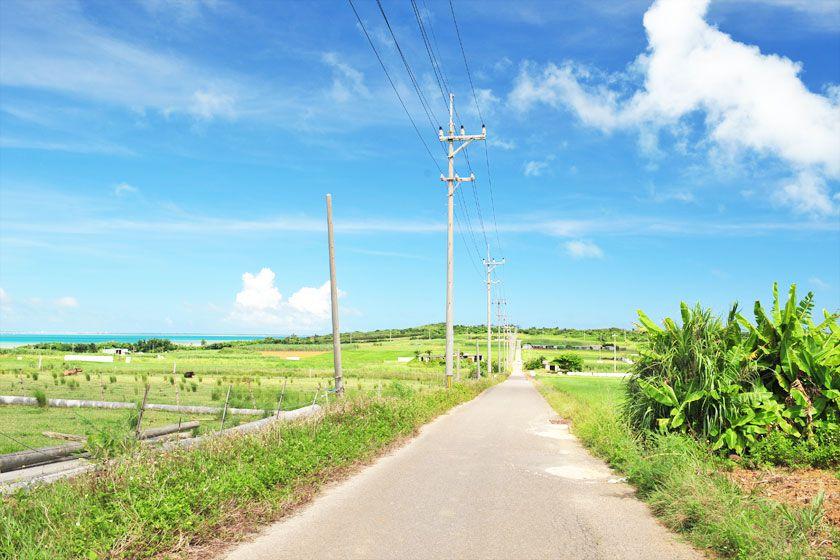 [1日で3島めぐり!]西表・由布・小浜3...の写真
