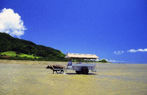 石垣島から行く離島めぐり