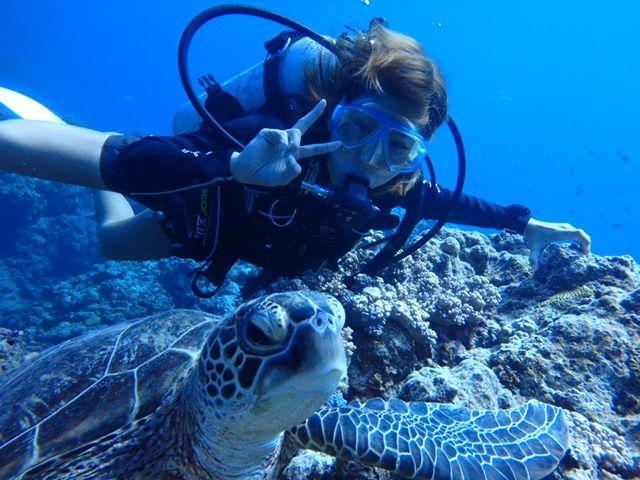 クルージング+体験ダイビング+無人島上陸