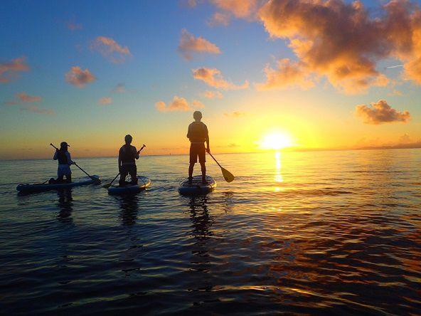 [沖縄・西表島]朝日を浴びながら気持ちの...の写真