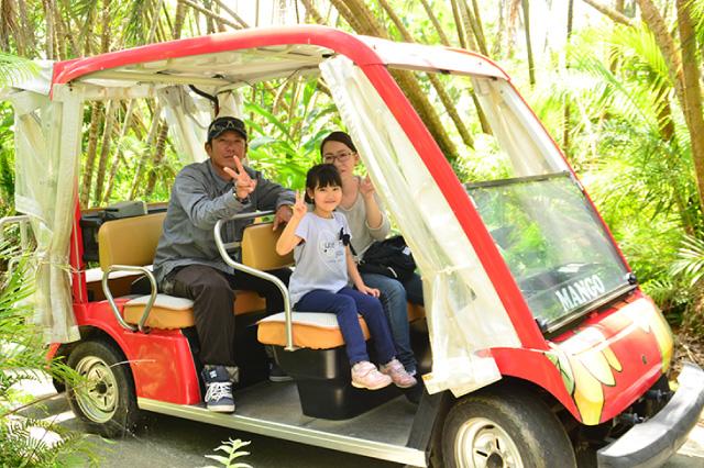 まいぱり宮古島熱帯果樹園
